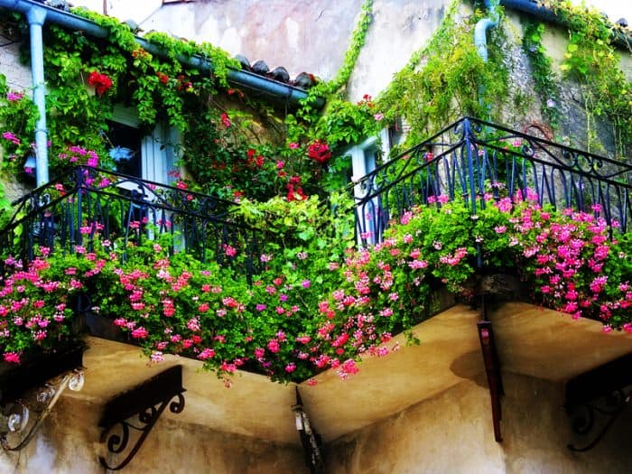 balcony-designs-foliage