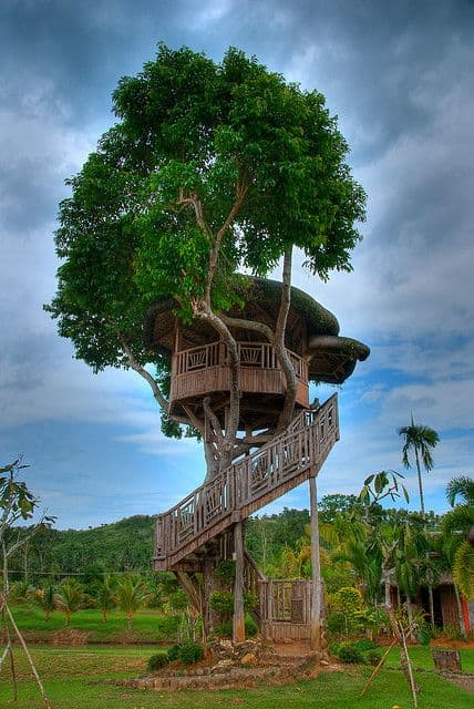 Amazing Backyard Tree House Getaways Salter Spiral Stair