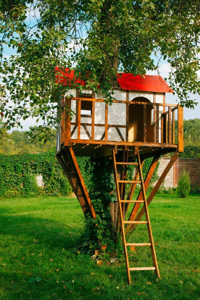 Amazing Backyard Tree House Getaways