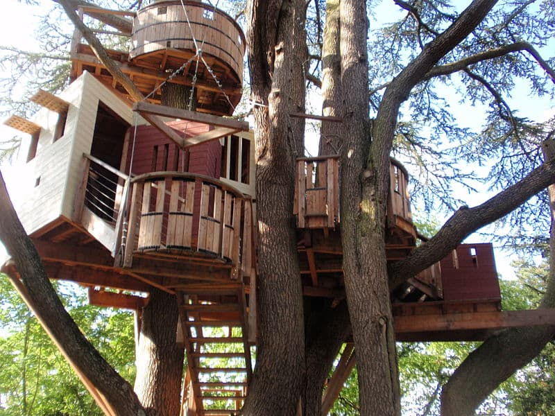 Amazing Backyard Tree House Getaways | Salter Spiral Stair on tree arm designs, flowers designs, tree of life designs, candle designs, tree twig designs, tree root designs, tree trunk designs, scarecrow designs, tree leaf designs, snowman designs, tree palm designs, tree leg designs, tree back designs, beach designs, tree hand designs, tree wood designs, pencil designs, snow designs, tree family designs,